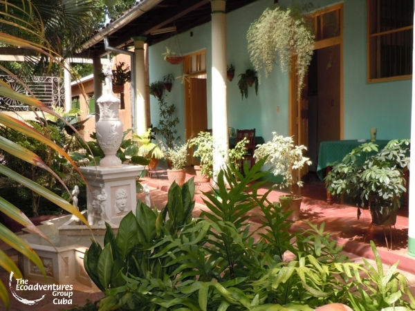 Patio details - Hostal Buen Viaje