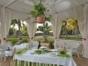 Weddings preliminaries