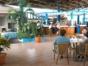Lobby Bar Coral
