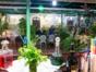 A la carte international restaurant La Auténtica Pergola
