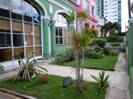 La Casa Verde, CALLE 9, No. 403